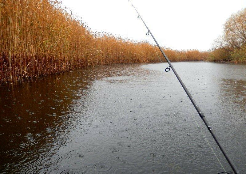10 3 - Рыбалка в дождь – 5 дельных советов